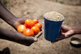 traders exchanging tomatoes for a cup of grain