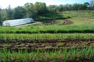 how to start a small farm business.
